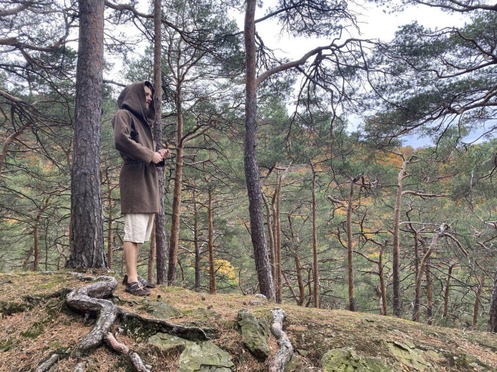 Adrean auf Hügel mit Blick in den Wald